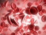 Программа профилактики железодефицитной анемии (ЖДА) или железодефицитного состояния (ЖДС)